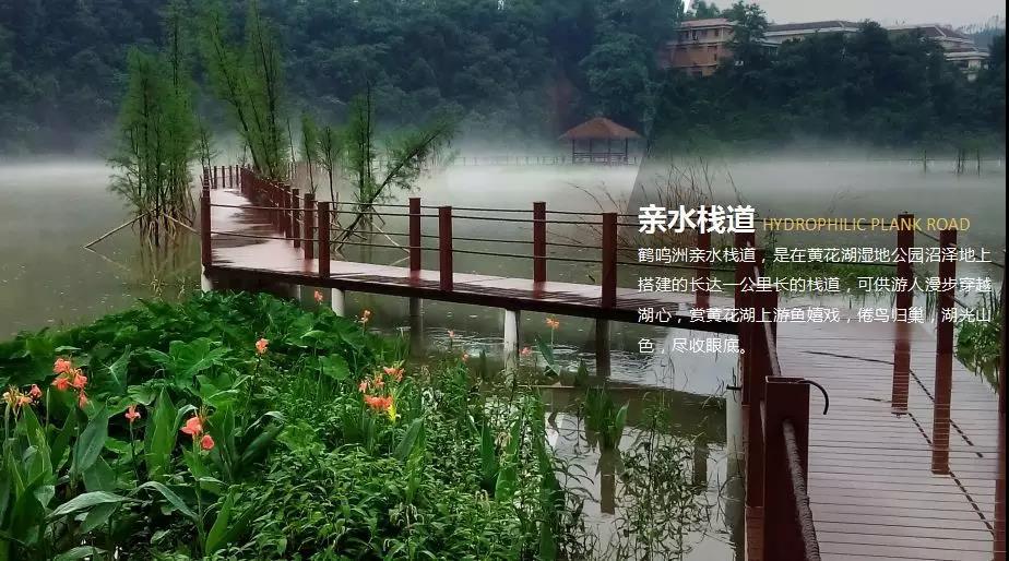 【私家独立温泉】清远佛冈鹤鸣洲樱花温泉度假村(高级房 时令水果