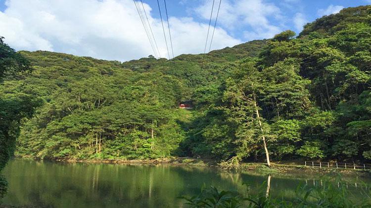 【野趣体验】河源桂山风景区门票(可选玻璃漂流/网红桥)