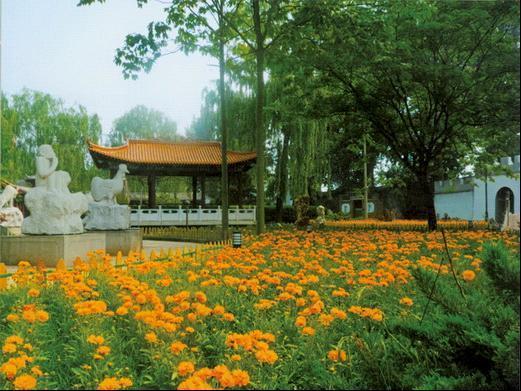 北京市大兴区留民营生态农场观光庄园门票 2大人1小孩
